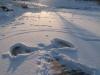 winter2012_fleischerwiese_zugefroren_engel_melanie-fuchs