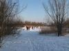 winter2012_fleischerwiese_zugefroren_weg_melanie-fuchs