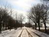 winter2012_gristow02_johanna-nikulski-dirks