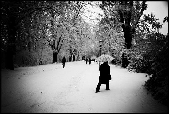 fotowettbewerb-550x371-alexander_koecher