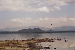Natronsee Lake Elmenteita