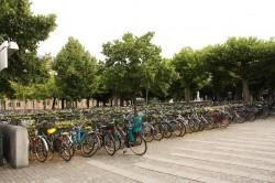 Ein Fahrradparkplatz in Lund