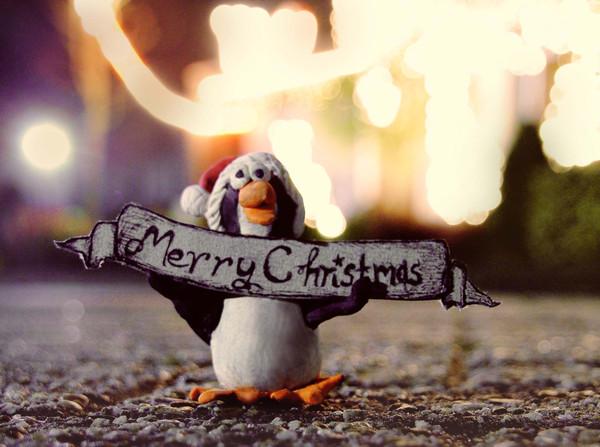 Weihnachten im Schuhkarton: Geschenke für Flüchtlingskinder