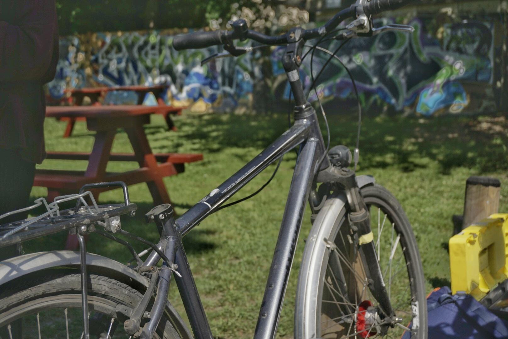 Fisch sucht Fahrrad
