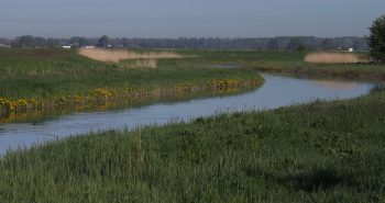 Den Ryck entlang vom Graben bis zur Mündung