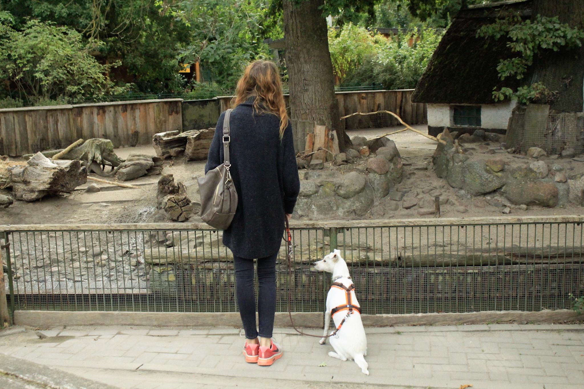Merles erster Tierparkbesuch