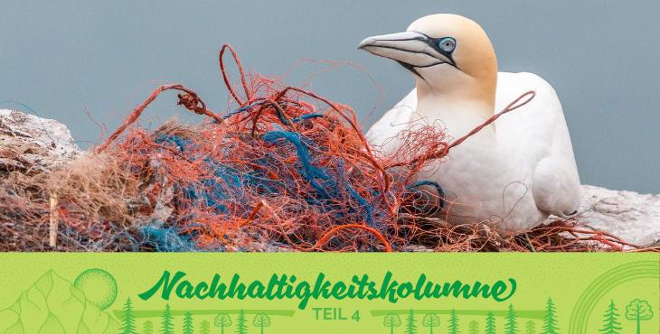 Auswirkungen von Plastikmüll auf Tiere und Pflanzen