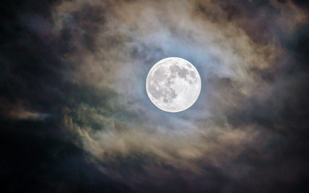 Renate und die Mondnazis
