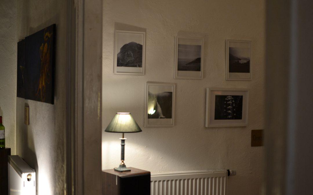 Kunst für sauberes Wasser: Die Living Room Gallery in Greifswald